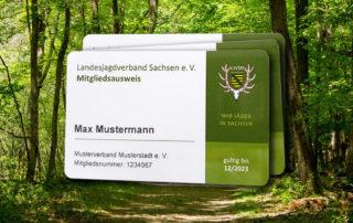 Landesjagdverband Sachsen Mitgliedsausweis, Ausweis und Hintergrund Bild vom Wald